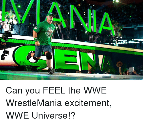 World Wrestling Entertainment, Wrestlemania, and Universe: VANIA Can you FEEL the WWE WrestleMania excitement, WWE Universe!?