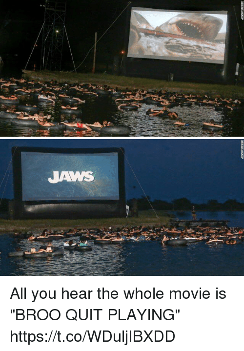 """Quit Playing: ve   JAWS All you hear the whole movie is """"BROO QUIT PLAYING"""" https://t.co/WDuljIBXDD"""