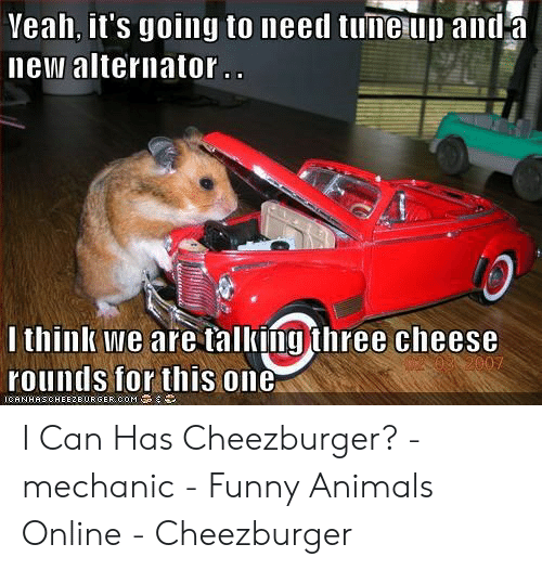 Funny Mechanic Memes: Veah, it's going to need tune up anda  new alternator.  I think we are talking three cheese  rounds for this one  ICANHASCHEE2BURGER.COM I Can Has Cheezburger? - mechanic - Funny Animals Online - Cheezburger
