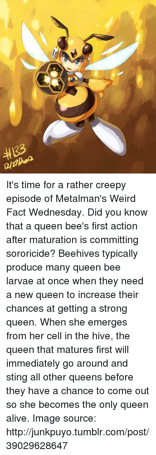 Go around and sting all other queens before they have a chance to come