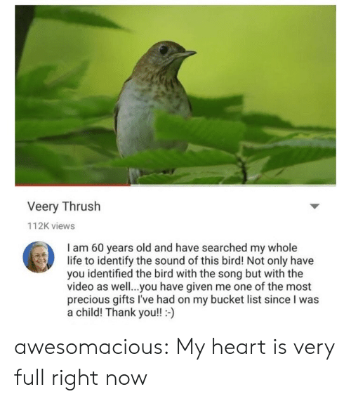 Bucket list: Veery Thrush  112K views  I am 60 years old and have searched my whole  life to identify the sound of this bird! Not only have  you identified the bird with the song but with the  video as well..you have given me one of the most  precious gifts I've had on my bucket list since I was  a child! Thank you!!- awesomacious:  My heart is very full right now