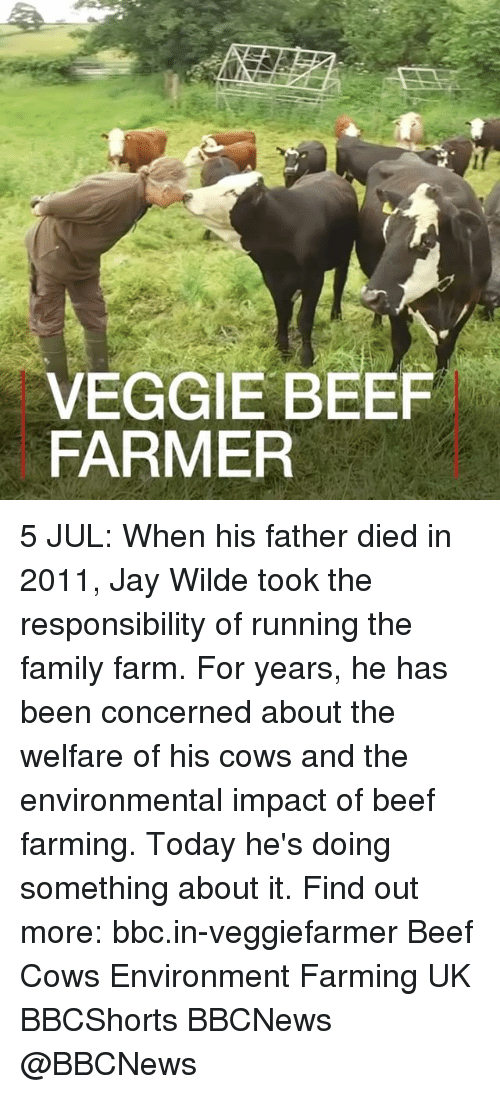 Beef, Family, and Jay: VEGGIE BEEF  FARMER 5 JUL: When his father died in 2011, Jay Wilde took the responsibility of running the family farm. For years, he has been concerned about the welfare of his cows and the environmental impact of beef farming. Today he's doing something about it. Find out more: bbc.in-veggiefarmer Beef Cows Environment Farming UK BBCShorts BBCNews @BBCNews
