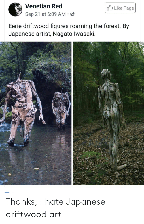 Venetian: Venetian Red  Like Page  Sep 21 at 6:09 AM  Eerie driftwood figures roaming the forest. By  Japanese artist, Nagato lwasaki Thanks, I hate Japanese driftwood art