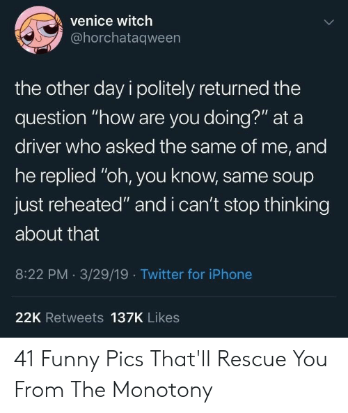 """funny pics: venice witch  @horchataqween  the other day i politely returned the  question """"how are you doing?"""" at a  driver who asked the same of me, and  he replied """"oh, you know, same sOup  just reheated"""" and i can't stop thinking  about that  8:22 PM 3/29/19 Twitter for iPhone  22K Retweets 137K Likes 41 Funny Pics That'll Rescue You From The Monotony"""