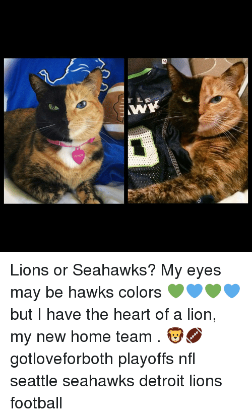 Detroit Lions: verius  r LE Lions or Seahawks? My eyes may be hawks colors 💚💙💚💙 but I have the heart of a lion, my new home team . 🦁🏈 gotloveforboth playoffs nfl seattle seahawks detroit lions football