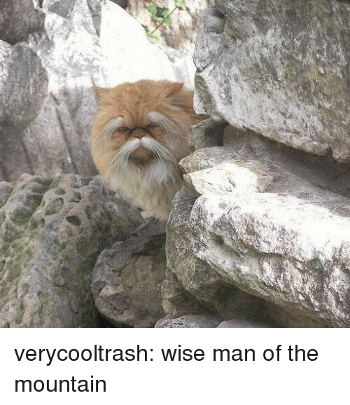 Wise Man: verycooltrash: wise man of the mountain