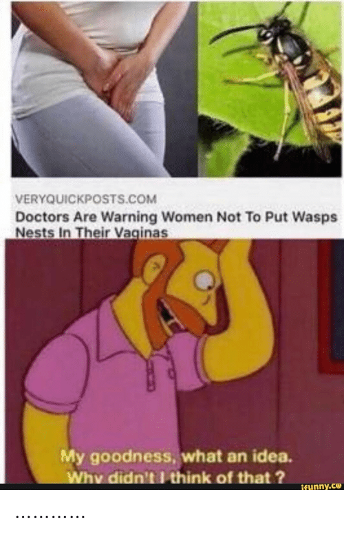 wasps: VERYQUICKPOSTS.COM  Doctors Are Warning Women Not To Put Wasps  Nests In Their Vaginas  My goodness, what an idea.  Why didn't think of that?  ifunny.co …………