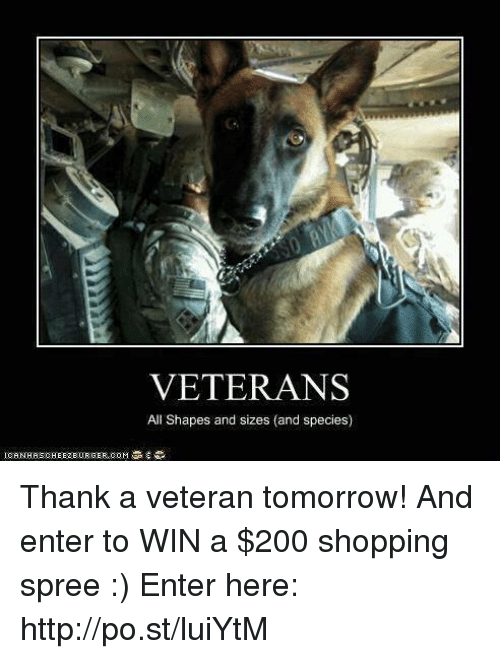 Thank You Veterans Funny Meme : Funny tomorrow memes of on sizzle chan