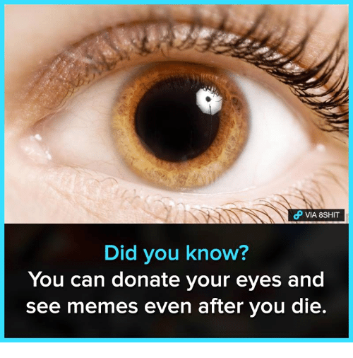 Memes, 🤖, and Can: VIA 8SHIT  Did you know?  You can donate your eyes and  see memes even after you die.