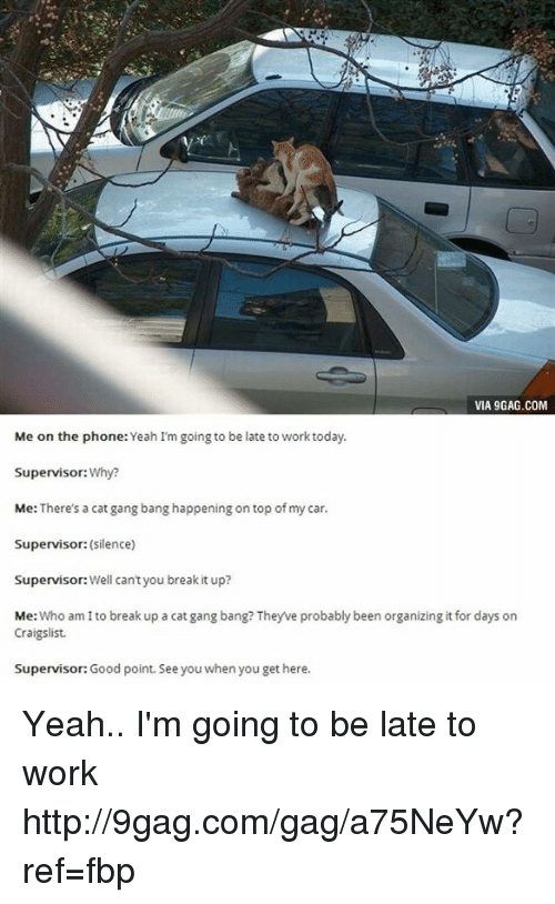 Cat Gang Bang: VIA 9GAG.COM  Me on the phone  Yeah I'm going to be late to work today.  Supervisor:  Why?  Me: There's a cat gang bang happening on top of my car.  Supervisor: (silence)  Supervisor:  Well can't you break it up?  Me  Who am to break up a cat gang bang? Theyve probably been organizing it for days on  Craigslist.  Supervisor: Good point. See you when you get here. Yeah.. I'm going to be late to work http://9gag.com/gag/a75NeYw?ref=fbp