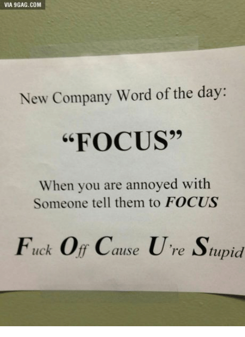 """word of the day: VIA 9GAG.COM  New Company Word of the day:  """"FOCUS""""  When you are annoyed with  Someone tell them to FOCUS  Fuck Of Cause U're Supid  re Stupid"""