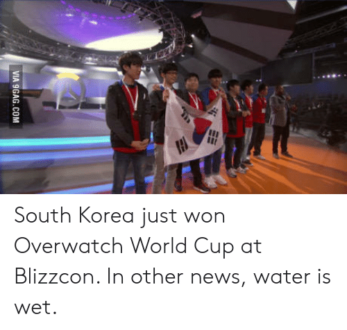 Blizzcon: VIA 9GAG.COM South Korea just won Overwatch World Cup at Blizzcon. In other news, water is wet.