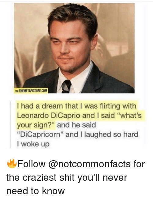 "A Dream, Leonardo DiCaprio, and Memes: VIA THEMETAPICTURECOM  I had a dream that I was flirting with  Leonardo DiCaprio and I said ""what's  your sign?"" and he said  ""DiCapricorn"" and I laughed so hard  I woke up 🔥Follow @notcommonfacts for the craziest shit you'll never need to know"