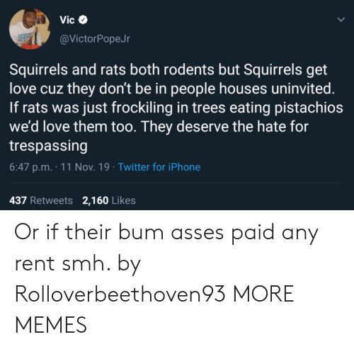 rats: Vic  @VictorPopeJr  Squirrels and rats both rodents but Squirrels get  love cuz they don't be in people houses uninvited.  If rats was just frockiling in trees eating pistachios  we'd love them too. They deserve the hate for  trespassing  6:47 p.m. 11 Nov. 19 Twitter for iPhone  437 Retweets 2,160 Likes Or if their bum asses paid any rent smh. by Rolloverbeethoven93 MORE MEMES
