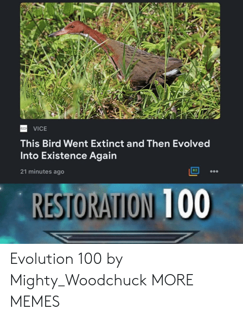 Restoration: VICE  This Bird Went Extinct and Then Evolved  Into Existence Again  21 minutes ago  RESTORATION 100 Evolution 100 by Mighty_Woodchuck MORE MEMES