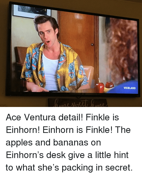 Einhorn Is Finkle: VICELAND