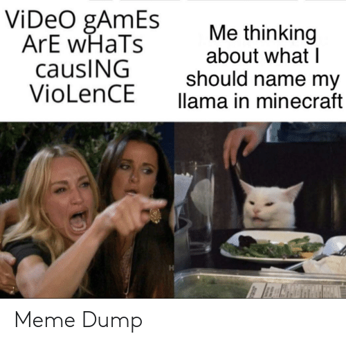 llama: ViDeO gAmEs  ArE wHaTs  causING  VioLenCE  Me thinking  about what I  should name my  llama in minecraft Meme Dump