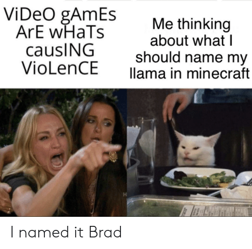 llama: ViDeO gAmEs  ArE wHaTs  causING  VioLenCE  Me thinking  about what I  should name my  llama in minecraft I named it Brad