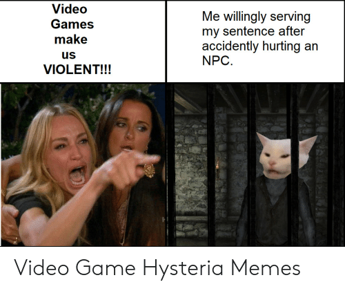 accidently: Video  Me willingly serving  my sentence after  accidently hurting an  NPC  Games  make  us  VIOLENT!!! Video Game Hysteria Memes