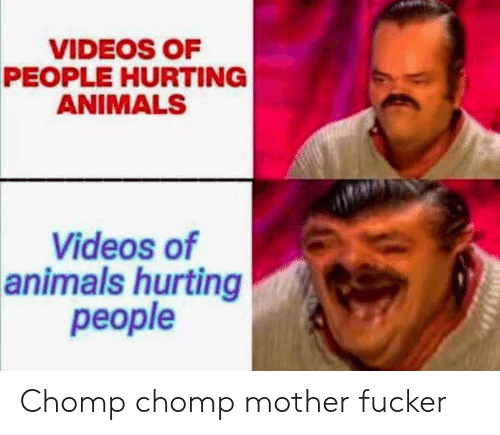 hurting: VIDEOS OF  PEOPLE HURTING  ANIMALS  Videos of  animals hurting  реople Chomp chomp mother fucker