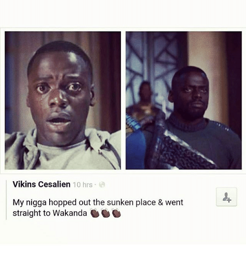 Memes, My Nigga, and 🤖: Vikins Cesalien 10 hrs  My nigga hopped out the sunken place &  went  straight to Wakanda