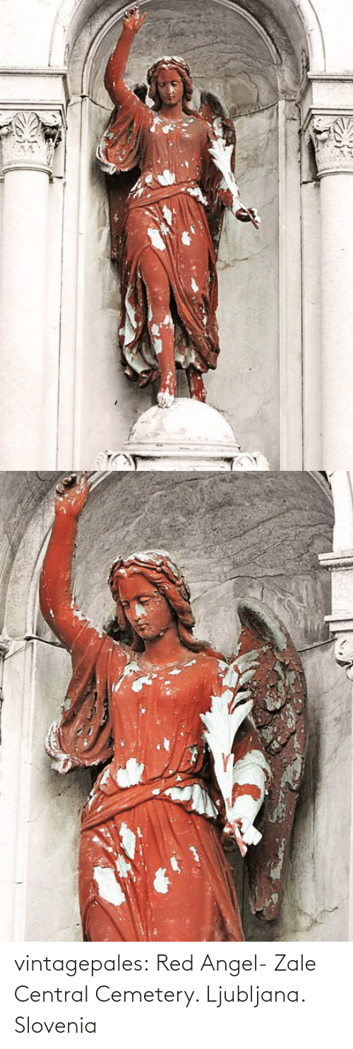 Angel: vintagepales:  Red Angel- Zale Central Cemetery. Ljubljana. Slovenia