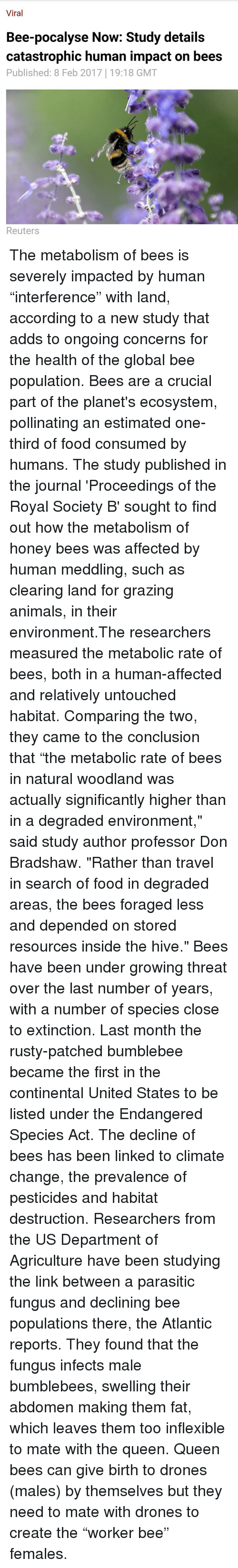 a discussion on the effects environment has on human minds The main concern of environmental philosophy has been to find value for nature   bearing in mind the above reflections, my definition of the word 'nature' will   the problem that recurs in discussions about environmental problems is the.