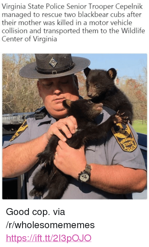 """Police, Cubs, and Good: Virginia State Police Senior Trooper Cepelnik  managed to rescue two blackbear cubs after  their mother was killed in a motor vehicle  collision and transported them to the Wildlife  Center of Virginia <p>Good cop. via /r/wholesomememes <a href=""""https://ift.tt/2I3pOJO"""">https://ift.tt/2I3pOJO</a></p>"""