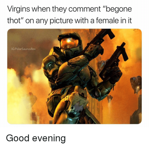 """Memes, Thot, and Good: Virgins when they comment """"begone  thot"""" on any picture with a female in it  IG:PolarSaurusRex Good evening"""