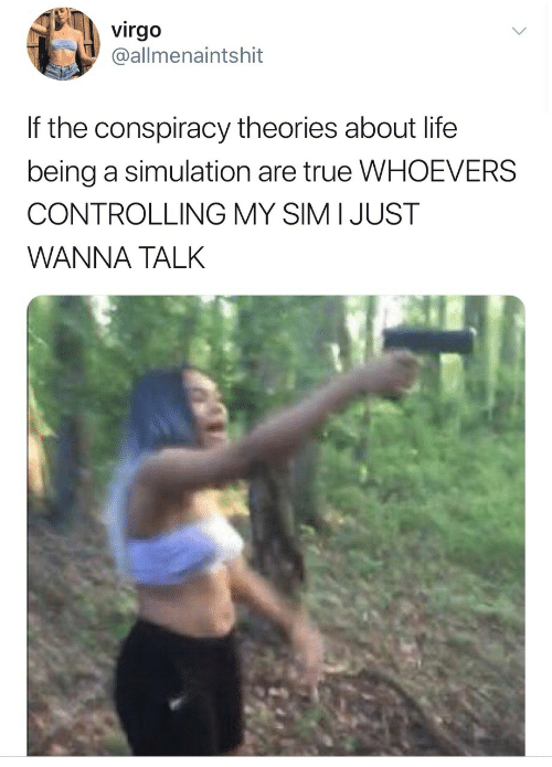 conspiracy theories: virgo  @allmenaintshit  If the conspiracy theories about life  being a simulation are true WHOEVERS  CONTROLLING MY SIM I JUST  WANNA TALK