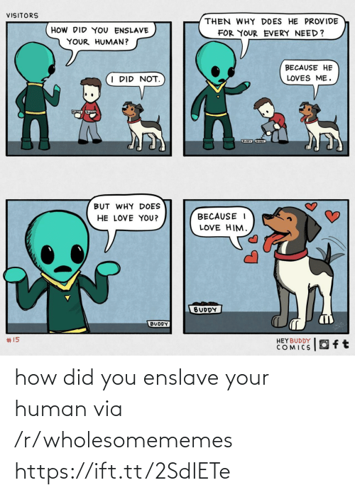 Uoy: VISITORS  THEN WHY DOES HE PROVIDE  HOW DID YOU ENSLAVE  FOR YOUR EVERY NEED?  YOUR HUMAN?  BECAUSE HE  I DID NOT.  LOVES ME.  BUODY UOY  BUT WHY DOES  HE LOVE YOU?  BECAUSE I  LOVE HIM.  BUDDY  BUDDY  2414  #15  HEYBUDDY  COMICS how did you enslave your human via /r/wholesomememes https://ift.tt/2SdIETe