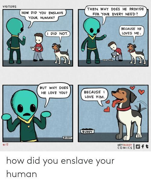 Uoy: VISITORS  THEN WHY DOES HE PROVIDE  HOW DID YOU ENSLAVE  FOR YOUR EVERY NEED?  YOUR HUMAN?  BECAUSE HE  I DID NOT.  LOVES ME.  BUODY UOY  BUT WHY DOES  HE LOVE YOU?  BECAUSE I  LOVE HIM.  BUDDY  BUDDY  2414  #15  HEYBUDDY  COMICS how did you enslave your human