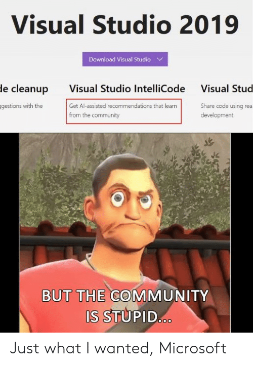 stud: Visual Studio 2019  Download Visual Studio  Visual Studio IntelliCode  Get Al-assisted recommendations that learn  from the community  le cleanup  Visual Stud  gestions with the  Share code using rea  development  BUT THE COMMUNITY  S STUPID Just what I wanted, Microsoft