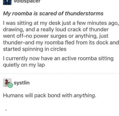Roomba: Voldspacer  My roomba is scared of thunderstorms  I was sitting at my desk just a few minutes ago,  drawing, and a really loud crack of thunder  went off-no power surges or anything, just  thunder-and my roomba fled from its dock and  started spinning in circles  I currently now have an active roomba sitting  quietly on my lap  systlin  Humans will pack bond with anything. .