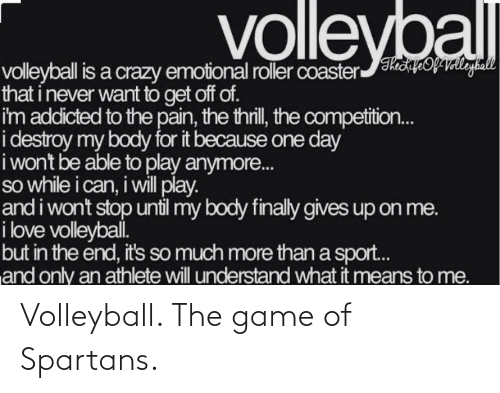 spartans: Volleyball. The game of Spartans.
