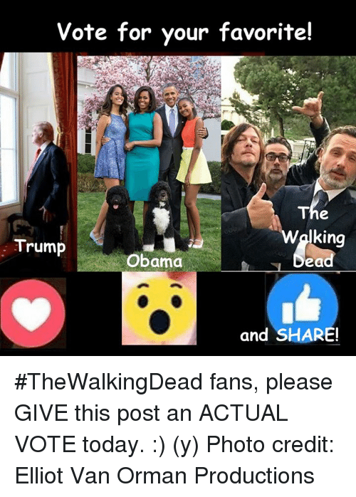 Trump Obama: Vote for your favorite!  The  king  Trump  Obama  bea  and SHARE! #TheWalkingDead fans, please GIVE this post an ACTUAL VOTE today. :) (y)  Photo credit: Elliot Van Orman Productions