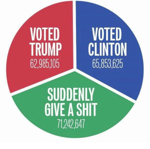 Trump Clinton: VOTED VOTED  TRUMP CLINTON  62 985,105  65,853,625  SUDDENLY  GIVE A SHIT  71242 647