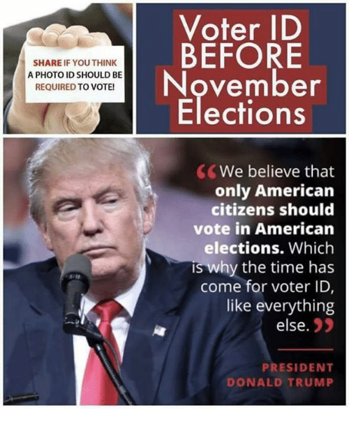Donald Trump, Memes, and American: Voter ID  BEFORE  November  Elections  SHARE IF YOU THINK  A PHOTO ID SHOULD BE  REQUIRED TO VOTE  CWe believe that  only American  citizens should  vote in American  elections. Which  s why the time has  come for voter ID,  like everything  else.  PRESIDENT  DONALD TRUMP