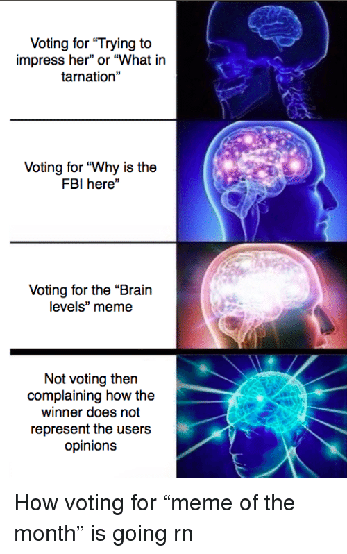 """What In Tarnation: Voting for """"Trying to  impress her"""" or """"What in  tarnation""""  Voting for """"Why is the  FBI here""""  Voting for the """"Brain  levels"""" meme  Not voting then  complaining how the  winner does not  represent the users  opinions <p>How voting for &ldquo;meme of the month&rdquo; is going rn</p>"""