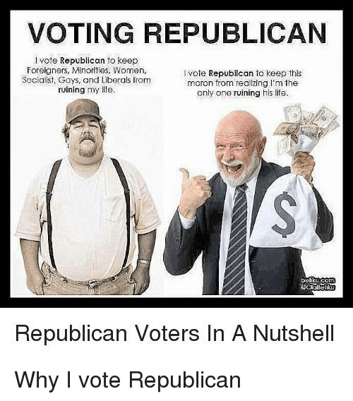 Voting Republican: VOTING REPUBLICAN  I vote Republican to keep  Foreigners, Minorities, Women  Socialist, Gays, and Liberals from  ruining my life.  vote Republican to keep this  moron from realizing I'm the  only one ruining his life.  behku  Republican Voters In A Nutshell