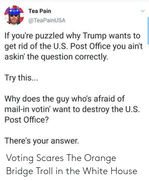 White House: Voting Scares The Orange Bridge Troll in the White House