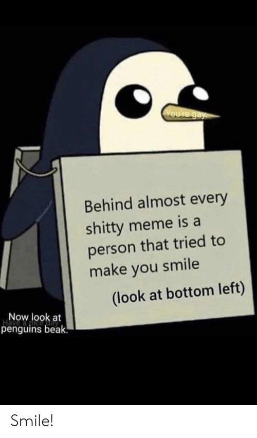 Penguins: Voure gay  Behind almost every  shitty meme is a  person that tried to  make you smile  (look at bottom left)  Now look at  penguins beak. Smile!