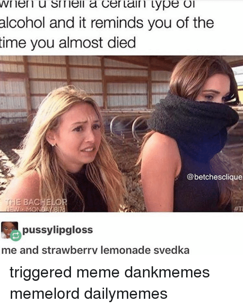 Trigger Meme: VVI en u Sl nell a Cer lain Lype Ol  alcohol and it reminds you of the  time you almost died  @betchesclique  THE BACHELO  #TI  pussylipgloss  me and strawberrv lemonade svedka triggered meme dankmemes memelord dailymemes