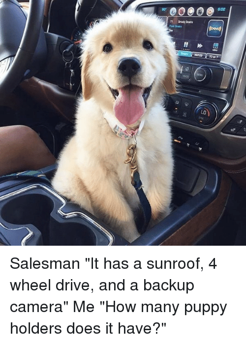"""Girl Memes: w,00.00602  妗蘯  on09 7007  LO  BJ Salesman """"It has a sunroof, 4 wheel drive, and a backup camera"""" Me """"How many puppy holders does it have?"""""""