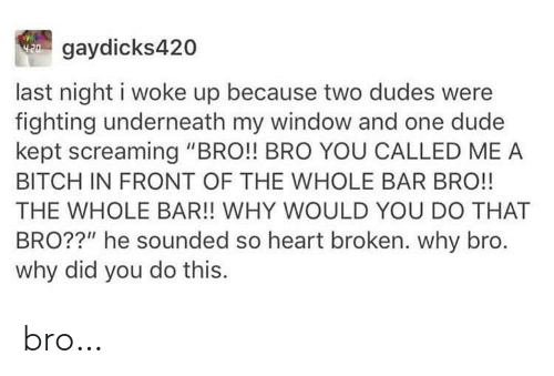 "Dudes: W gaydicks420  last night i woke up because two dudes were  fighting underneath my window and one dude  kept screaming ""BRO!! BRO YOU CALLED ME A  BITCH IN FRONT OF THE WHOLE BAR BRO!!  THE WHOLE BAR!! WHY WOULD YOU DO THAT  BRO??"" he sounded so heart broken. why bro.  why did you do this. bro…"