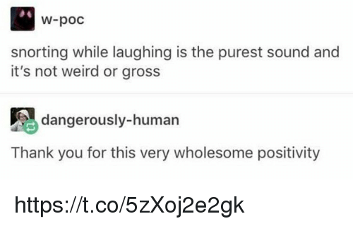 Memes, Weird, and Thank You: W-poc  snorting while laughing is the purest sound and  it's not weird or gross  dangerously-human  Thank you for this very wholesome positivity https://t.co/5zXoj2e2gk