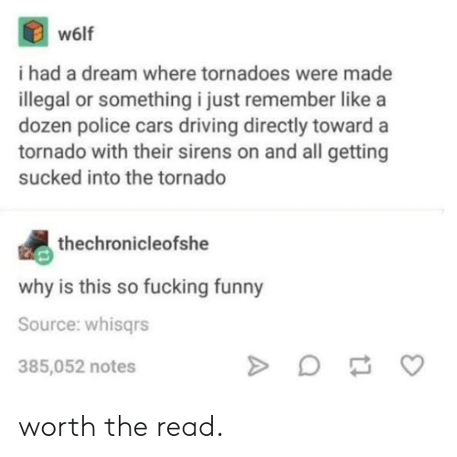 tornadoes: w6lf  i had a dream where tornadoes were made  illegal or something i just remember like a  dozen police cars driving directly toward a  tornado with their sirens on and all getting  sucked into the tornado  thechronicleofshe  why is this so fucking funny  Source: whisgrs  385,052 notes worth the read.