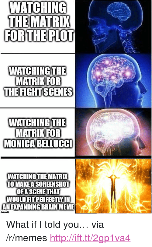 "Expanding Brain: WAICHING  THE MATRIX  FORTHE PLOT  WATCHING THE  MATRIKIFOR  THE FIGHTSCENES  WATCHING THE  MATRIK FOR  MONICABELLUCC  WATCHING THE MATRI  TO MAKE A SCREENSHOT  OFA SCENE THAT  WOULD FIT PERFECTLY IN  AN EXPANDING BRAIN MEME <p>What if I told you&hellip; via /r/memes <a href=""http://ift.tt/2gp1va4"">http://ift.tt/2gp1va4</a></p>"