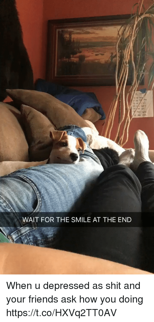 Friends, Shit, and Smile: WAIT FOR THE SMILE AT THE END When u depressed as shit and your friends ask how you doing https://t.co/HXVq2TT0AV