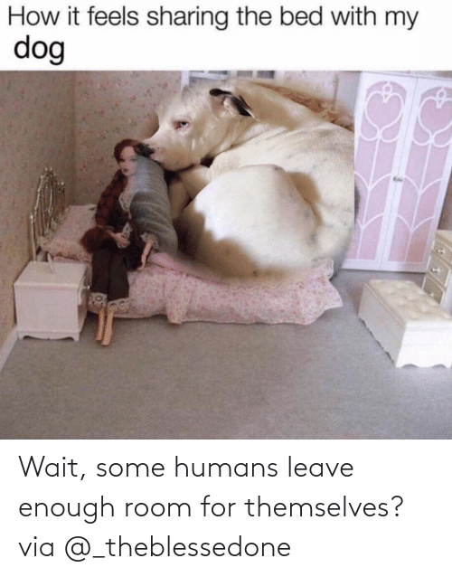 room: Wait, some humans leave enough room for themselves?via @_theblessedone